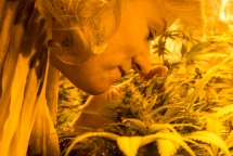 Growing marijuana is therapeutic to Kelly, who has known since her days in college that she had a green thumb. SHFWire Photo by Matias J. Ocner
